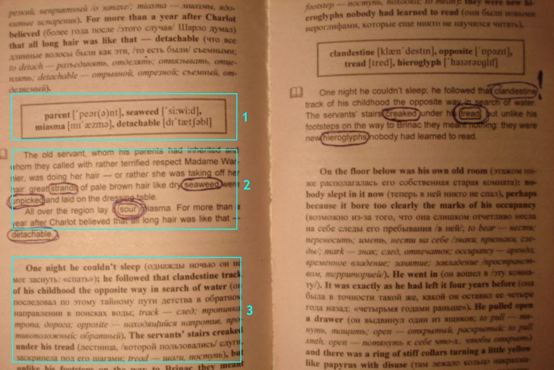 Илья франк английский книги скачать бесплатно торрент
